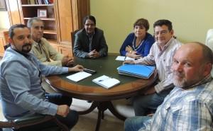 reunion sahara diputacion